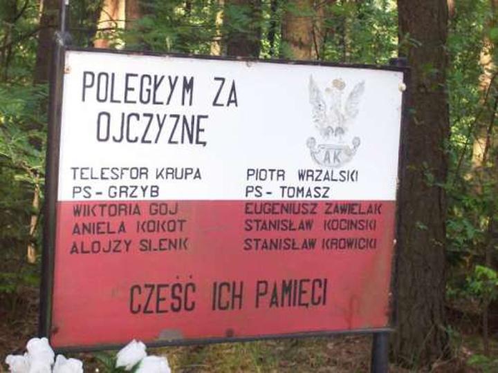 Wygoda Tokarska, tablica pamiątkowa ku czci żołnierzy AK, obok dawnego bunkra, stare zdjęcia -