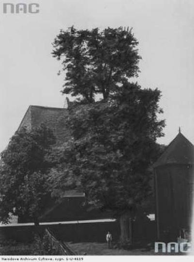 Kościół Wniebowzięcia Najświętszej Maryi Panny, stare zdjęcia -