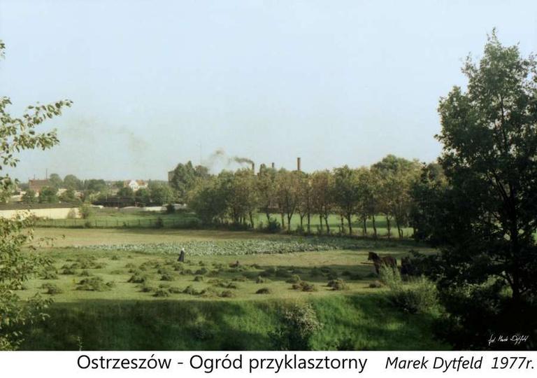 Rok 1977, widok na przyklasztorne łąki i ogród, w oddali  widoczna Pollena i dym..., stare zdjęcia -
