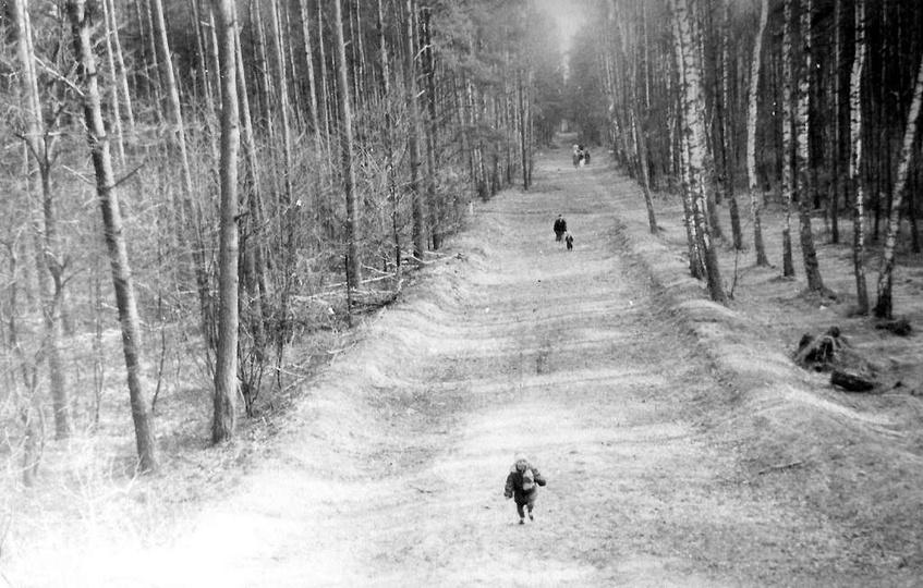 31.03.1986 rok. Zdjęcie pochodzi z czasów gdy górka w lesie klasztornym była jes... -