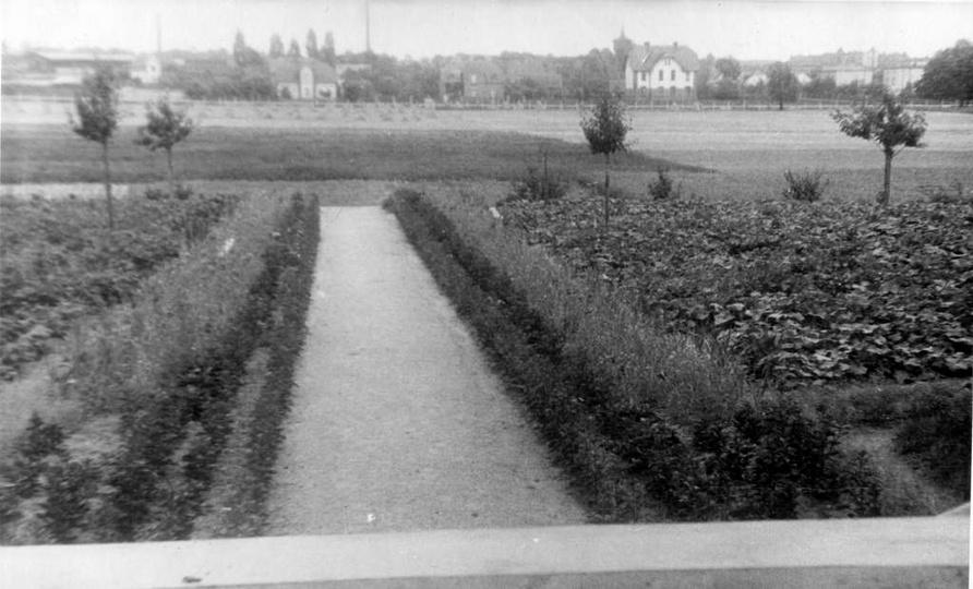Koniec lat 40-tych, widok z klasztoru na ogród, łąki i domy przy ulicy Powstańcó..., stare zdjęcia -