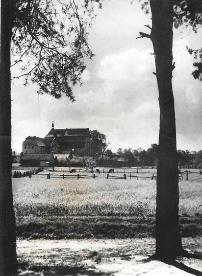 Pobernardyński Zespół Klasztorny oglądany od strony lasku klasztornego. Zdjęcia ..., stare zdjęcia -