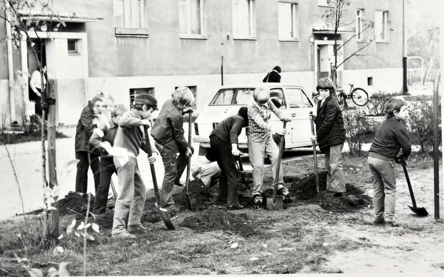 Osiedle M. Nowotki (Zamkowe). Koniec lat siedemdziesiątych. Sadzenie drzewek i ..., stare zdjęcia -