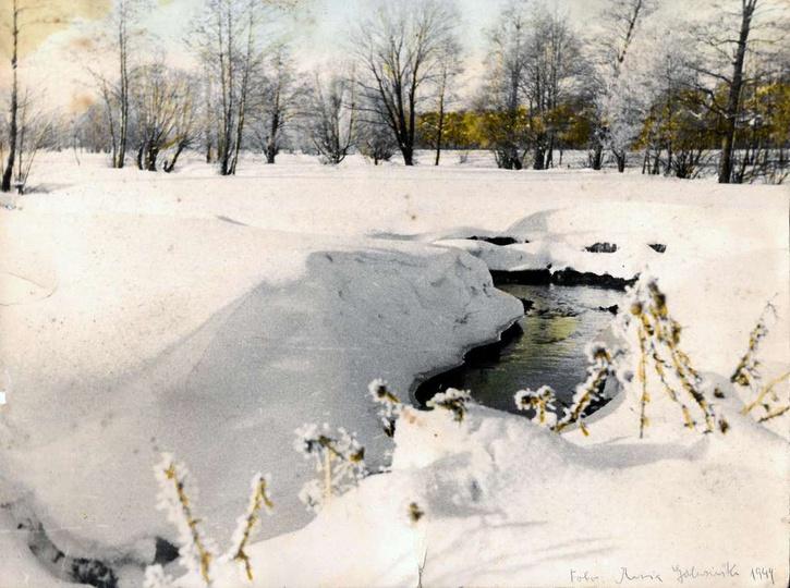 Strzegowa zimową porą, leniwie płynąca przez klasztorne łąki. Zdjęcie wykonane w... -