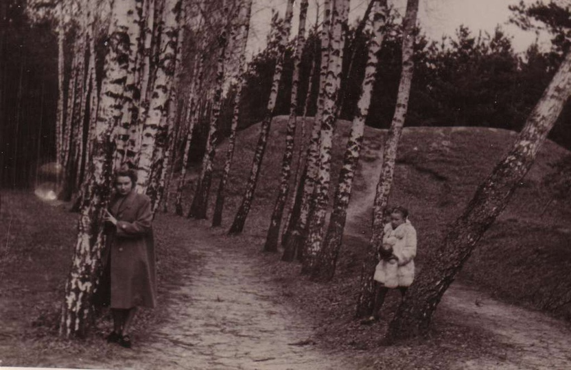 Rok 1948, przepiękna fotografia alejki brzozowej i górki w lesie klasztornym. Gó..., stare zdjęcia -