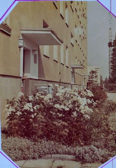Osiedle M. Nowotki (Zamkowe) Koniec lat 70-tych, blok nr 18 z pięknie zadbanym ..., stare zdjęcia -