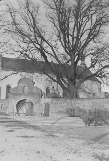 Klasztor i stara lipa, koniec lat czterdziestych. Ze zbiorów Witolda Kucharskieg..., stare zdjęcia -