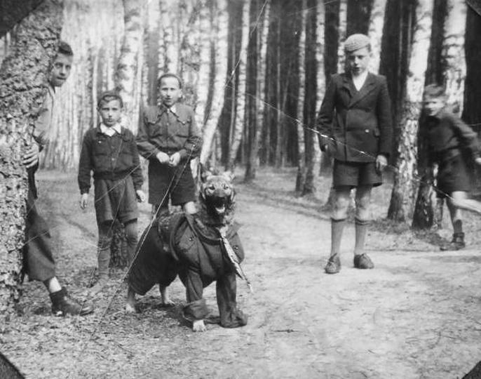 Brat Tadeusz( w czapce) w Klasztornym Lesie przy górce z kolegami : z Wolnym (za..., stare zdjęcia -
