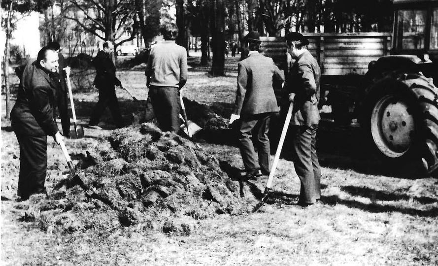 Czyn społeczny w parku miejskim, wiosna 1965., stare zdjęcia -