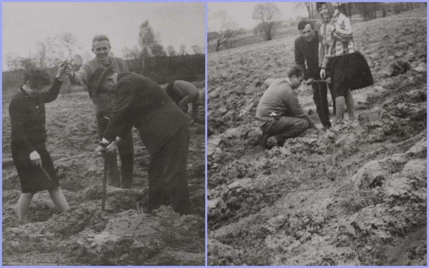 26-27 maja 1964 roku. Sadzenie lasu w czynie społecznym. Z kroniki Z.Z.P.P.i S...., stare zdjęcia -