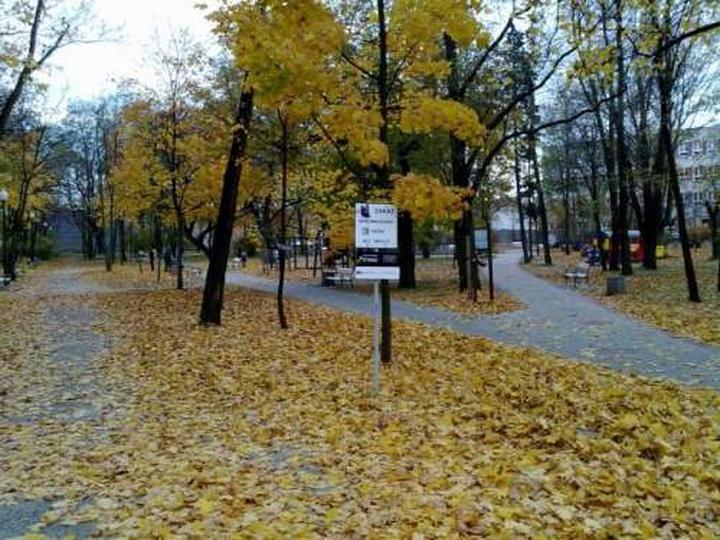Złota polska jesień w parku Kosynierów, stare zdjęcia -