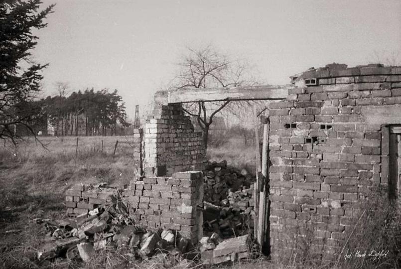 """Lato 1975 r., ruiny budynku na terenie obecnego """"Osiedla Piaskowego"""" Zdj. Marek..., stare zdjęcia -"""