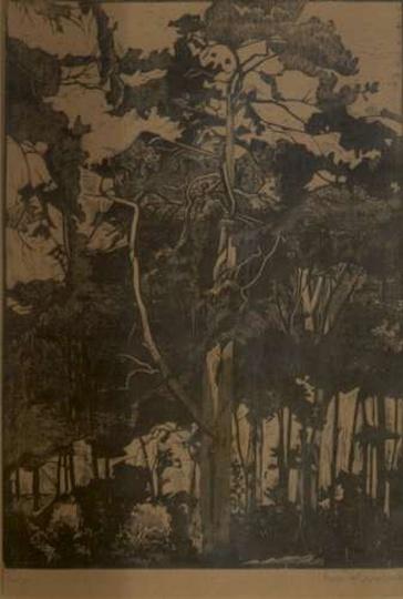 A. Serbeński - Leśny pejzaż, las. Drzeworyt, stare zdjęcia -