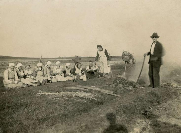 """Zdjęcia podpisane """"Kopiemy ziemniaki u Gorgolewskiego."""" Pierwsza siedząca kobiet..., stare zdjęcia -"""