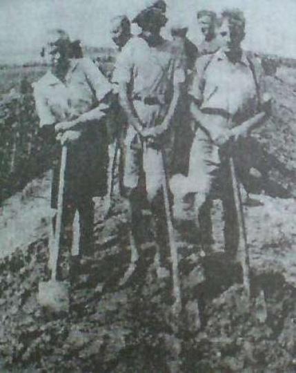 Kopanie rowów przeciwczołgowych koło Rojowa - sierpień 1939, stare zdjęcia -